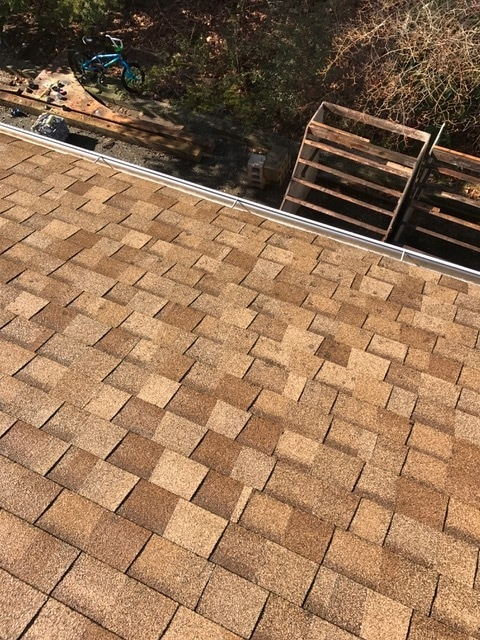 After Roof Cleaning